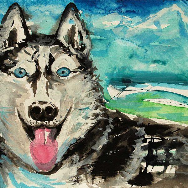 Husky 2, 2011, 24x32cm, Aquarell auf Papier
